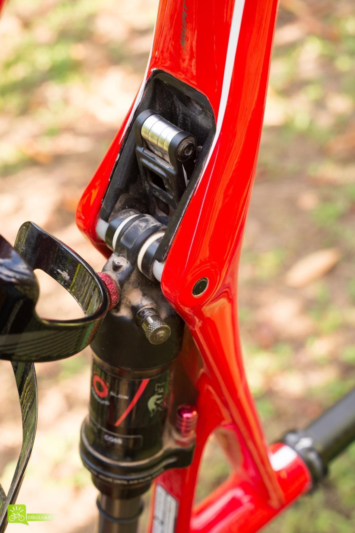 Nel Kit SWAT (Storage, Water, Air, Tool): Il piccolo Multi-tool con brugole e torx nascosto in un vano tra ammo e top tube, prima genialata!
