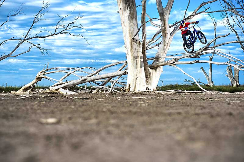 danny-macaskill-epecuen-tree-climb.jpg