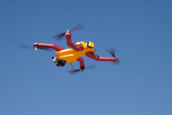 airdog_03.jpg