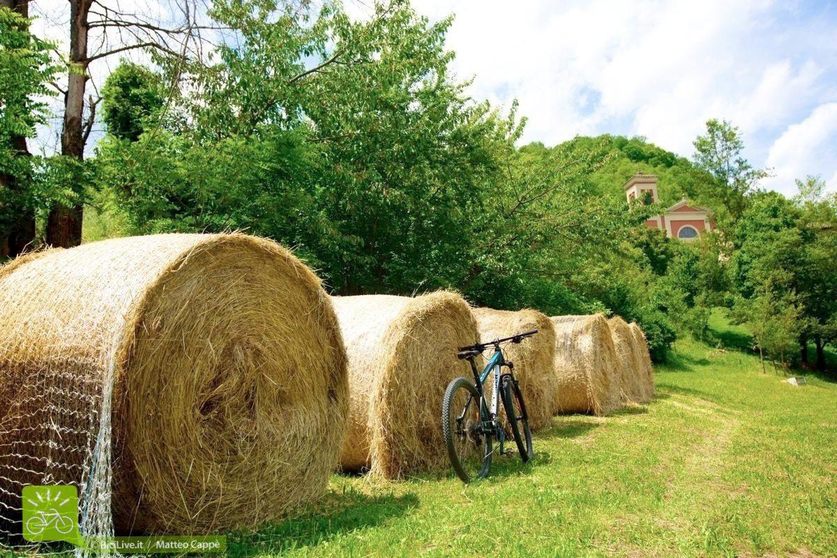 sassomarconi-mountainbike-bicilive1.jpg