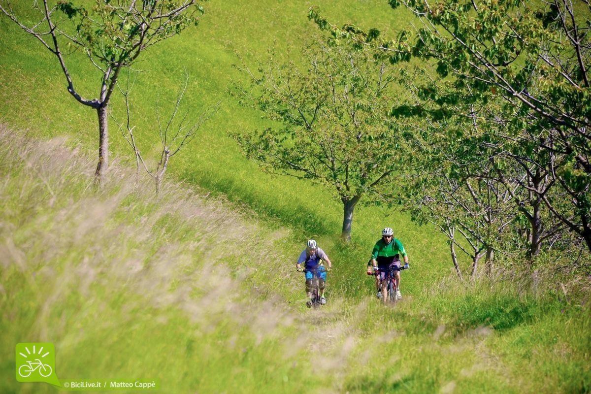 sassomarconi-mountainbike-bicilive10.jpg