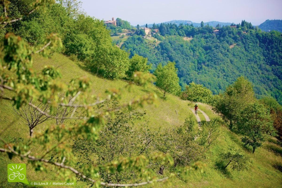 sassomarconi-mountainbike-bicilive11.jpg