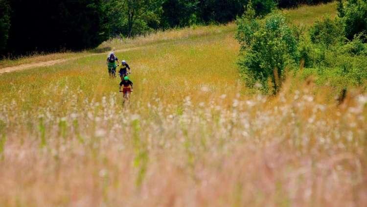 sassomarconi-mountainbike-bicilive12