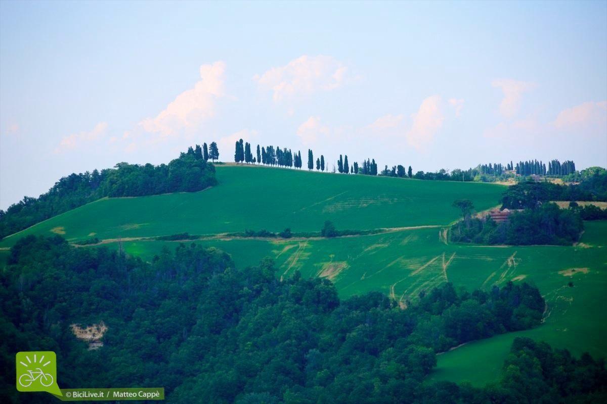 sassomarconi-mountainbike-bicilive18.jpg