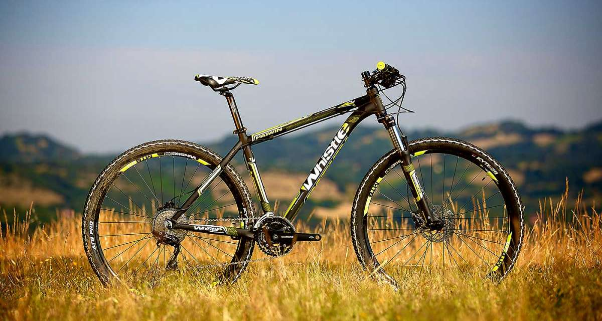 whistle-patwin-bicilive