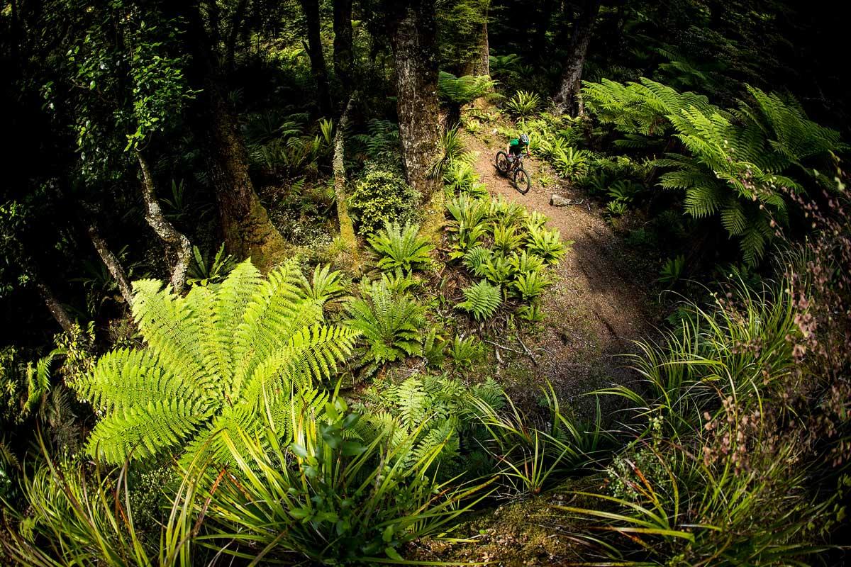 Anka Martin adora girare sui sentieri di casa, la Nuova Zelanda // Photo credit Sven Martin