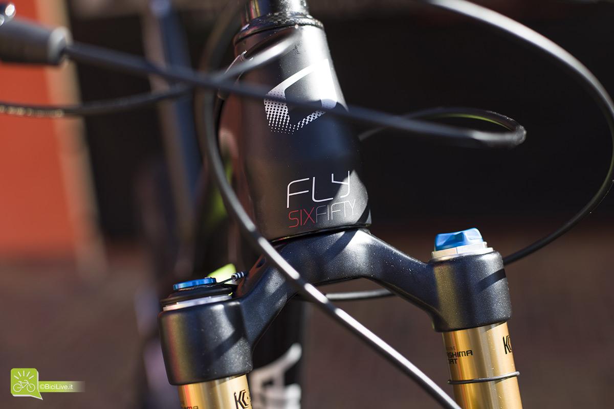 Fly650.jpg