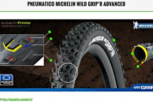 featured-wildgrip-Michelin