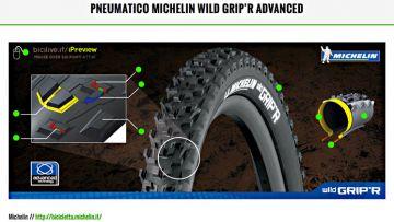 featured-wildgrip-Michelin