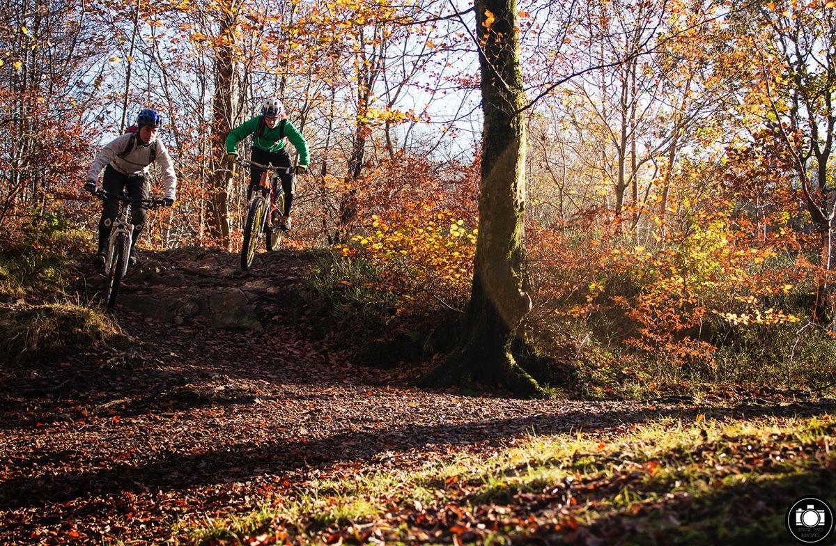 trail-10.jpg