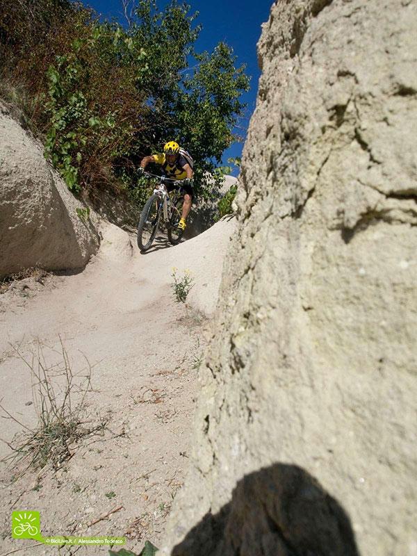 Roberto a palla tra i single track della Pigeon Valley. Molto facile trovare nei Coast2Coast mtb tour sezioni da Gravity!