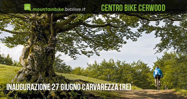centro_bike_cerwood_mtb_00