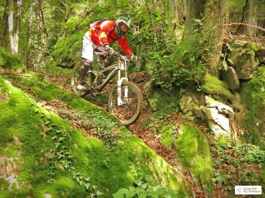 Nel bosco della Val Brembana in mountain bike
