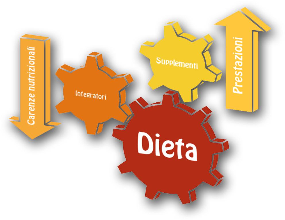 Gli integratori colmano una carenza, i supplementi forniscono qualcosa in più. Ma il tutto deve essere connesso ad una dieta equilibrata, o l'ingranaggio si blocca!