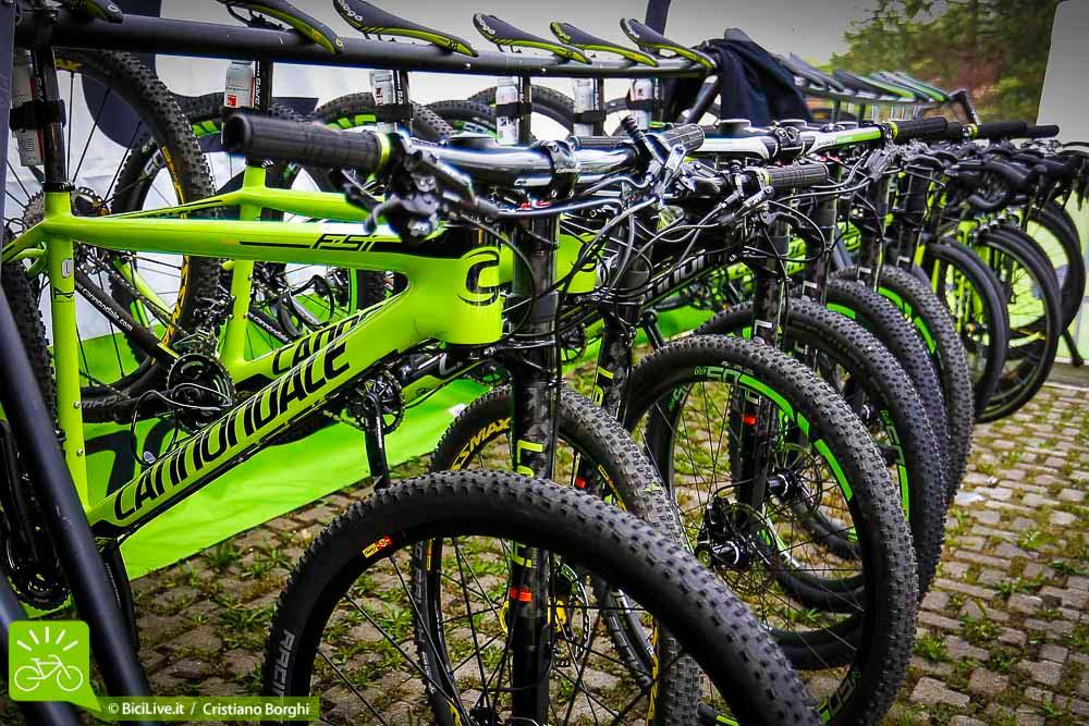 Bike-Shop-Test-Bologna-2015-02.jpg