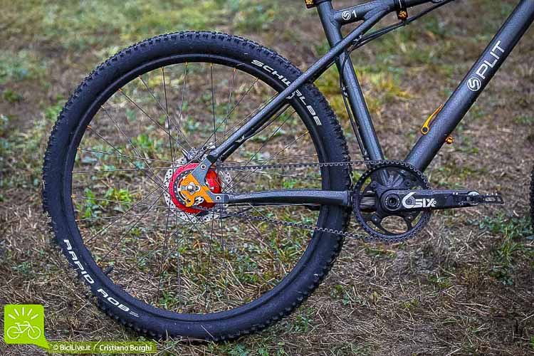 La pulizia visiva della bici è notevole grazie al Rohloff e alla cinghia Gates