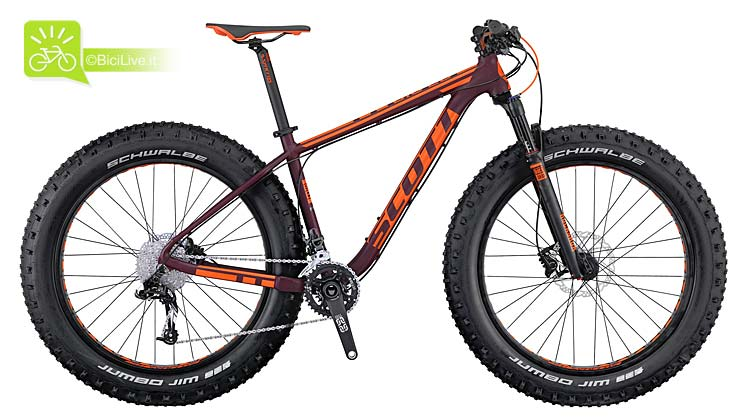 Bike Big Ed 2016 (fat bike)