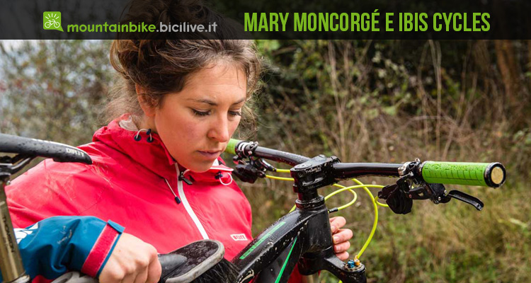 Mary-Moncorge-Ibis_matt-wragg