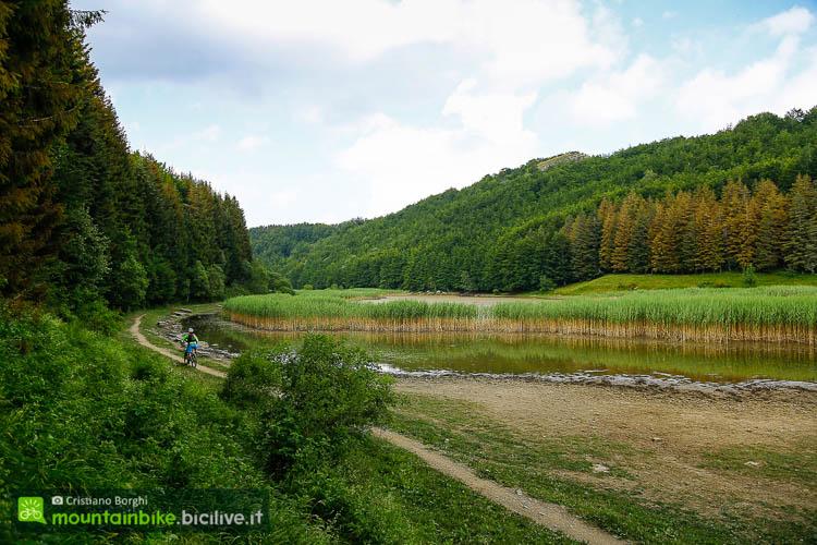foto del sentiero che costeggia il lago della Ninfa.