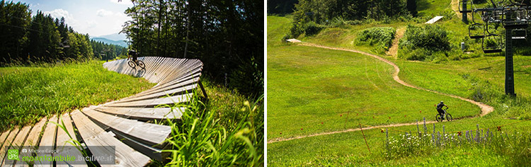 foto dei trail del bikepark lavarone