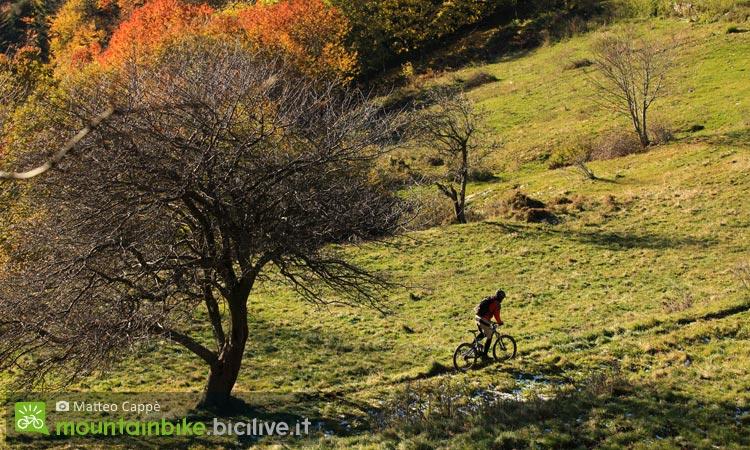un biker impegnato in un'escursione in mtb