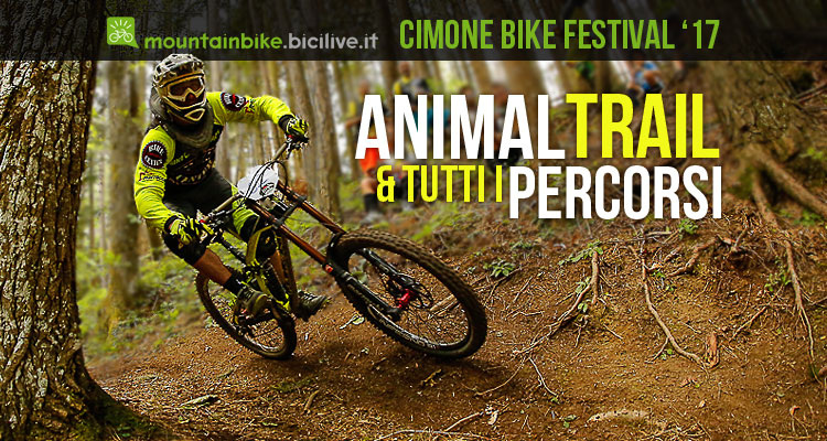 animal trail e i percorsi di montecreto