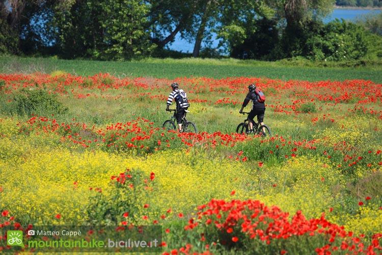 cicloturisti in italia