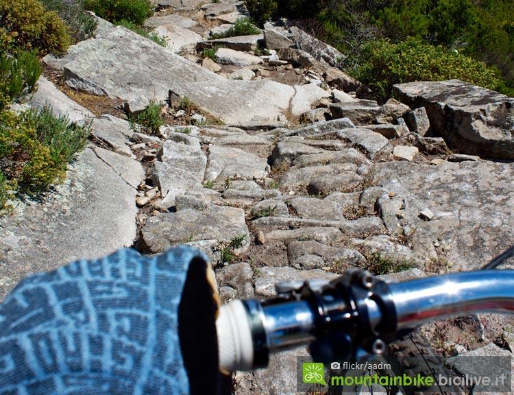 biker con i guanti in un trail sconnesso