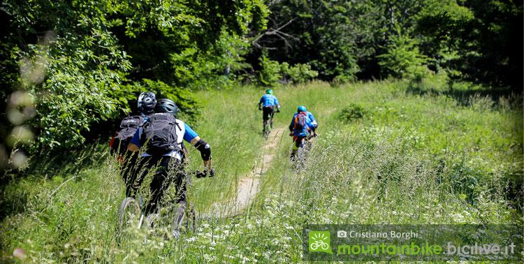 ciclisti con mtb da enduro verso il pino solitario