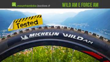 foto dello pneumatico michelin wild am