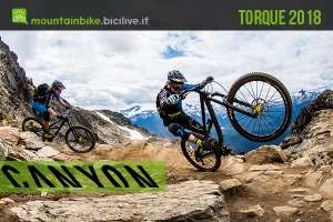 Canyon Torque 2018, gravity mtb bike