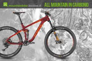 bergamont trailster elite am è una mtb am in carbonio