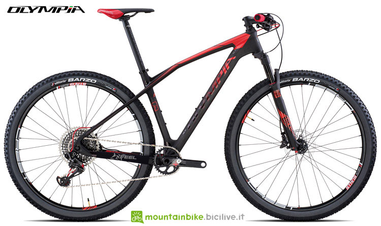 Una mountain bike hardtail Olympia Iron Race X01E