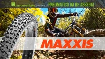 pneumatico da DH Maxxis Assegai