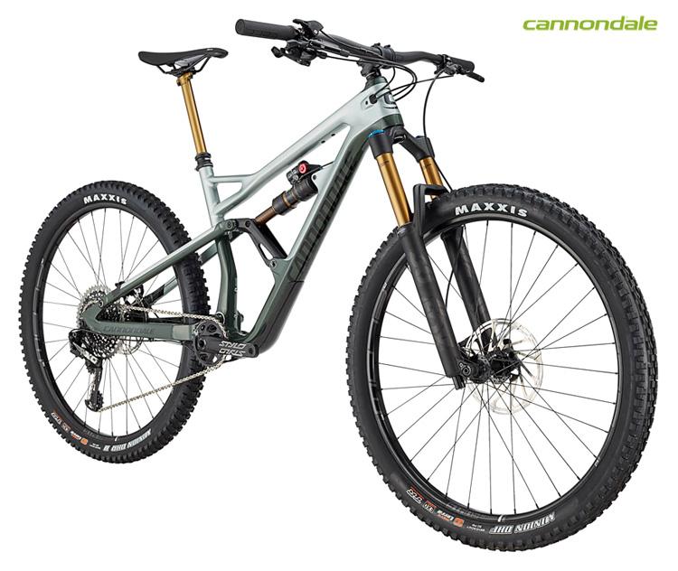 "Una mountain bike Cannondale Jekyll 29"" 1"