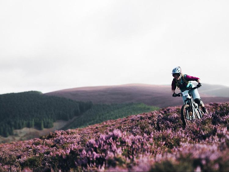 Ciclista su un campo di fiori Scozzese durante la ews
