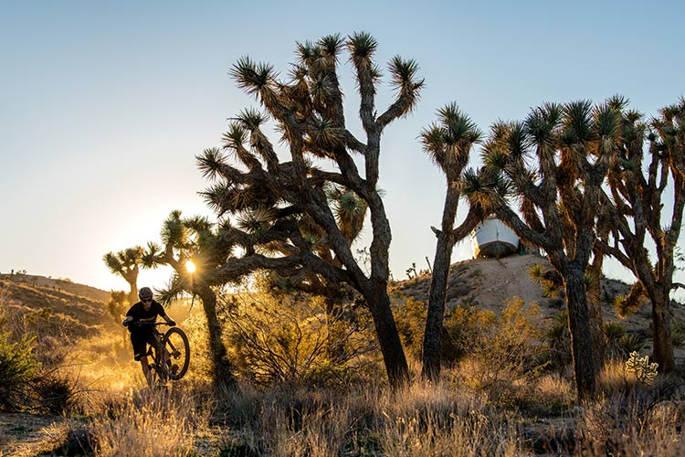foto di un rider mtb nel deserto