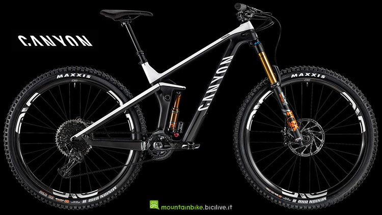 mountainbike Canyon Strive CFR 9.0 LTD gamma 2019