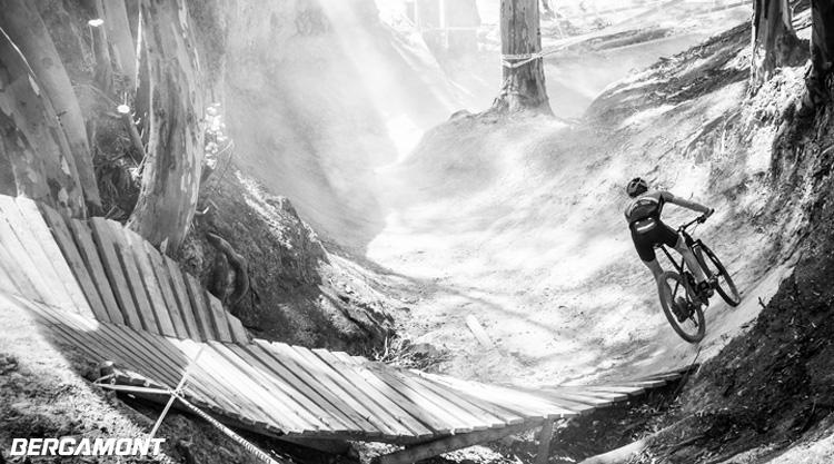 Un rider mtb su un trail nel bosco in sella a un modello Bergamont del 2020