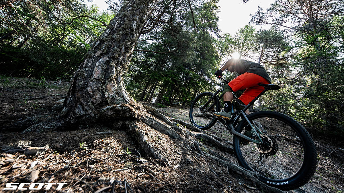 Un rider pedala nel bosco in sella a una mtb da Trail 2020 Scott