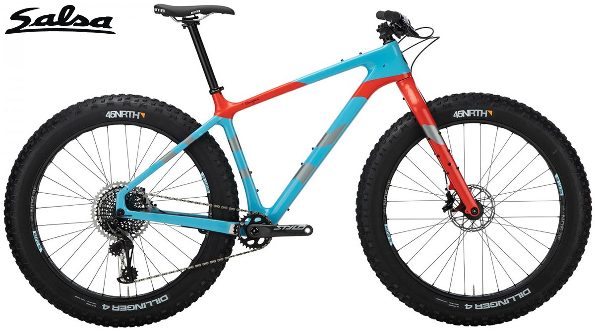 Una Fat bike Salsa Beargrease Carbon 2020