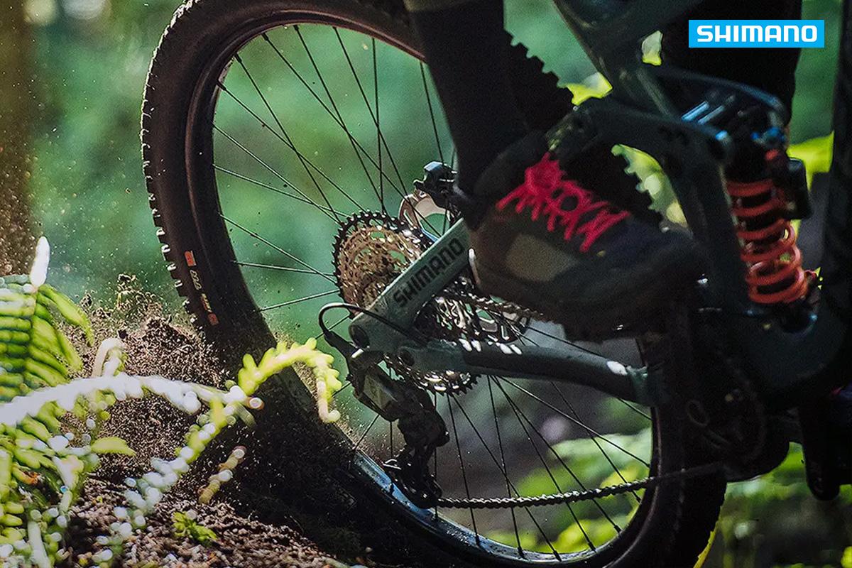 particolare del logo shimano su una bici in un bosco