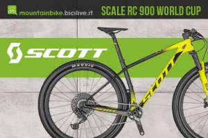 Cover-Scott-Scale-RC-900-World-Cup-2020