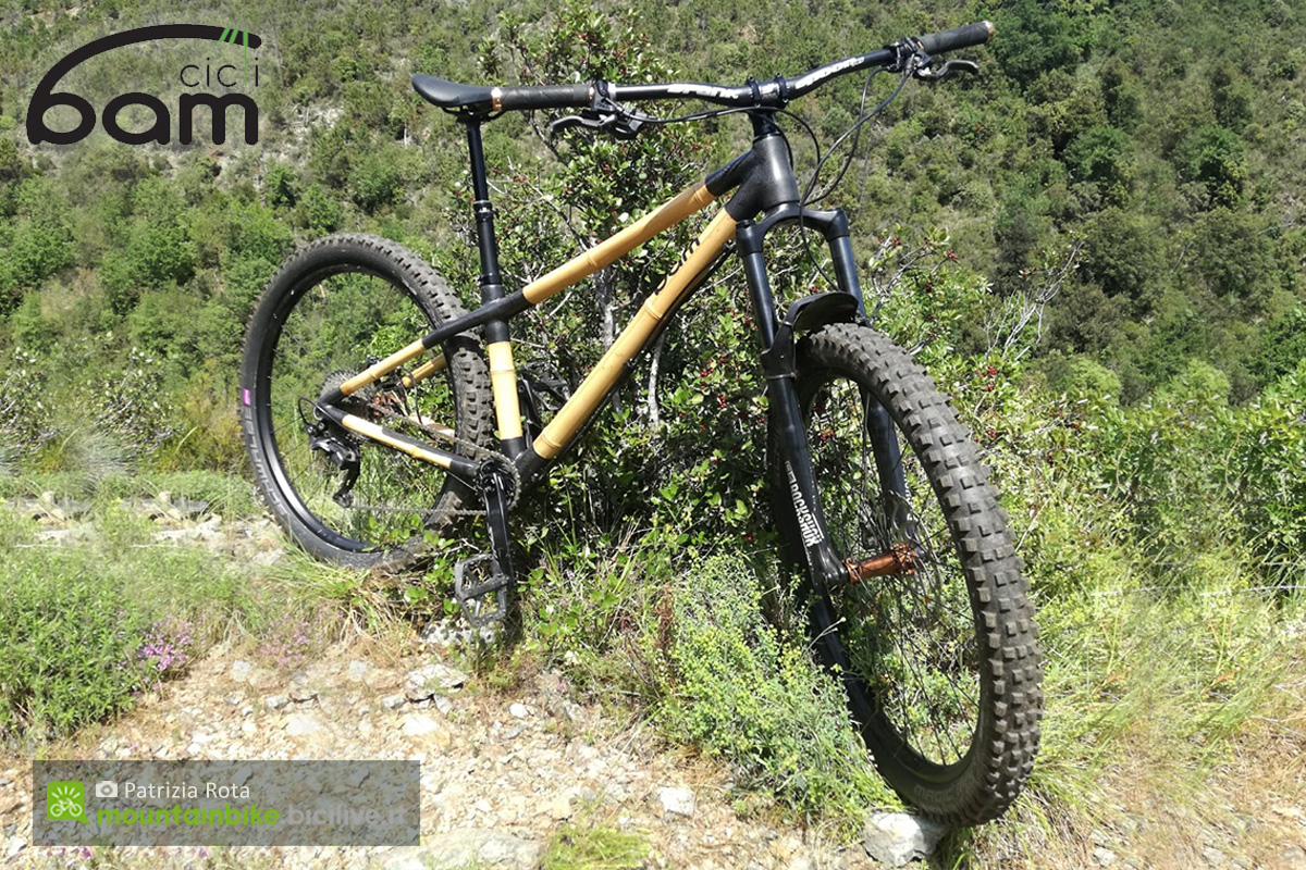 Una mountain bike in bamboo Heidi di BAM Cicli