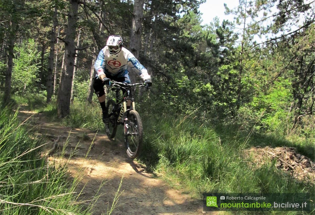 Roberto Calcagnile in azione nel bosco in sella a una mountain bike