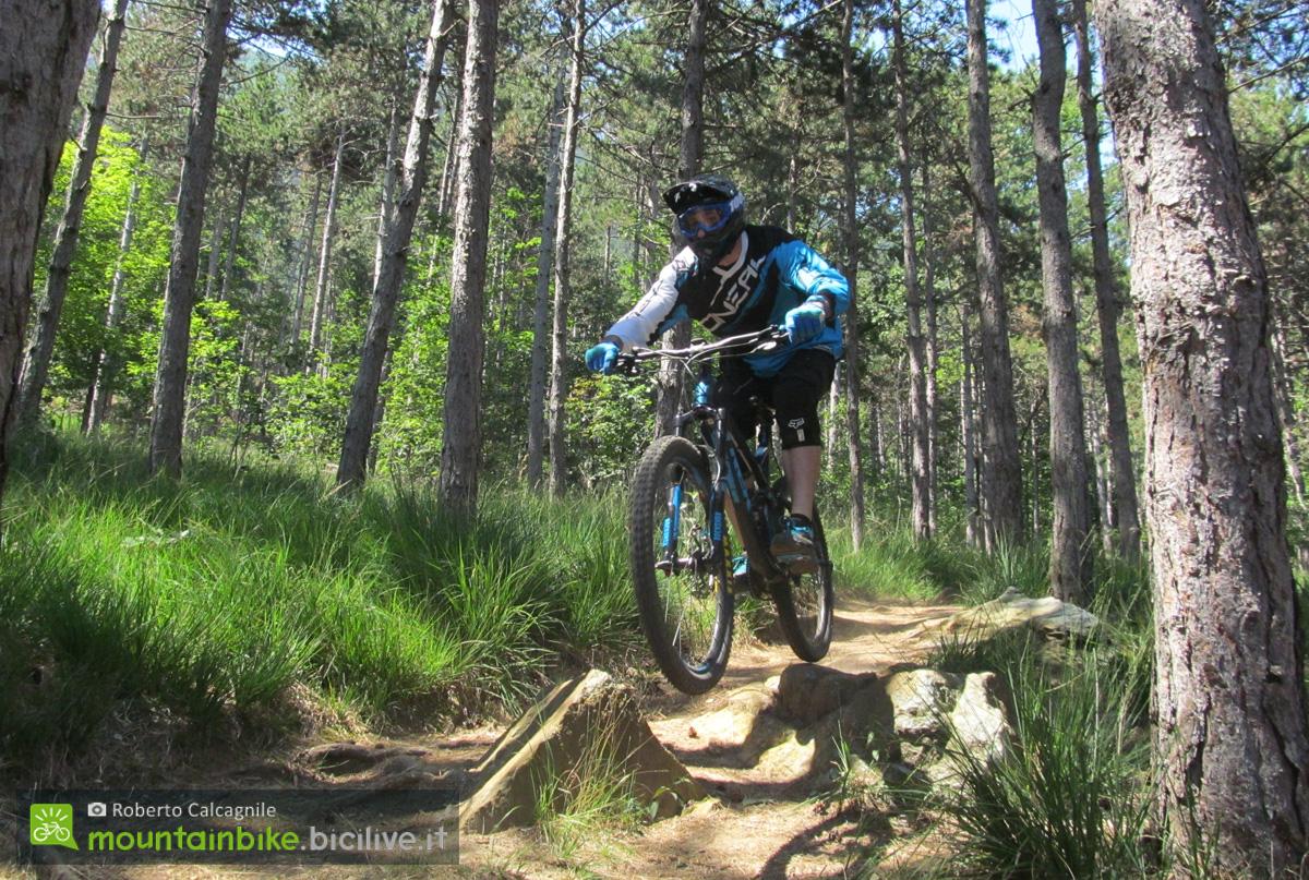 Il mountain bike rider Roberto Calcagnile in azione nel bosco