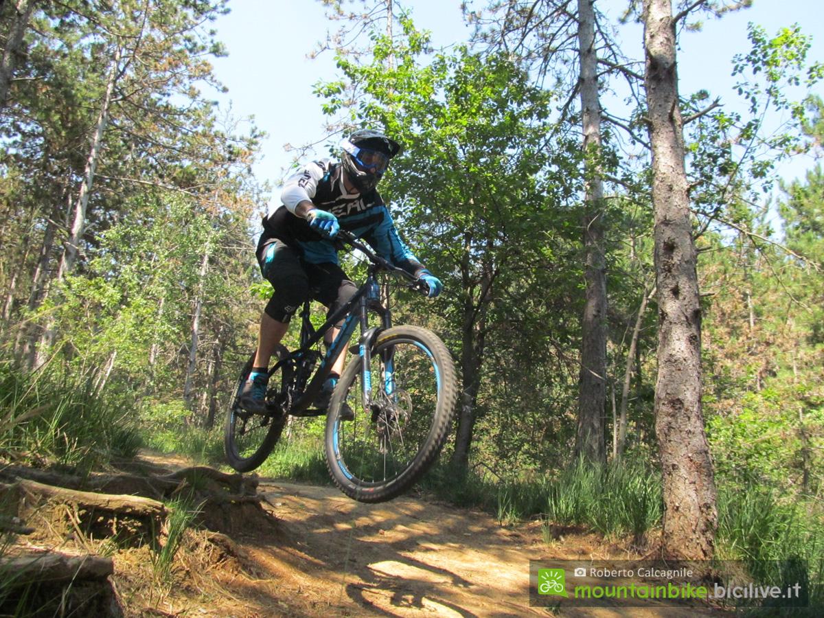 Il rider mtb Roberto Calcagnile in azione nel bosco