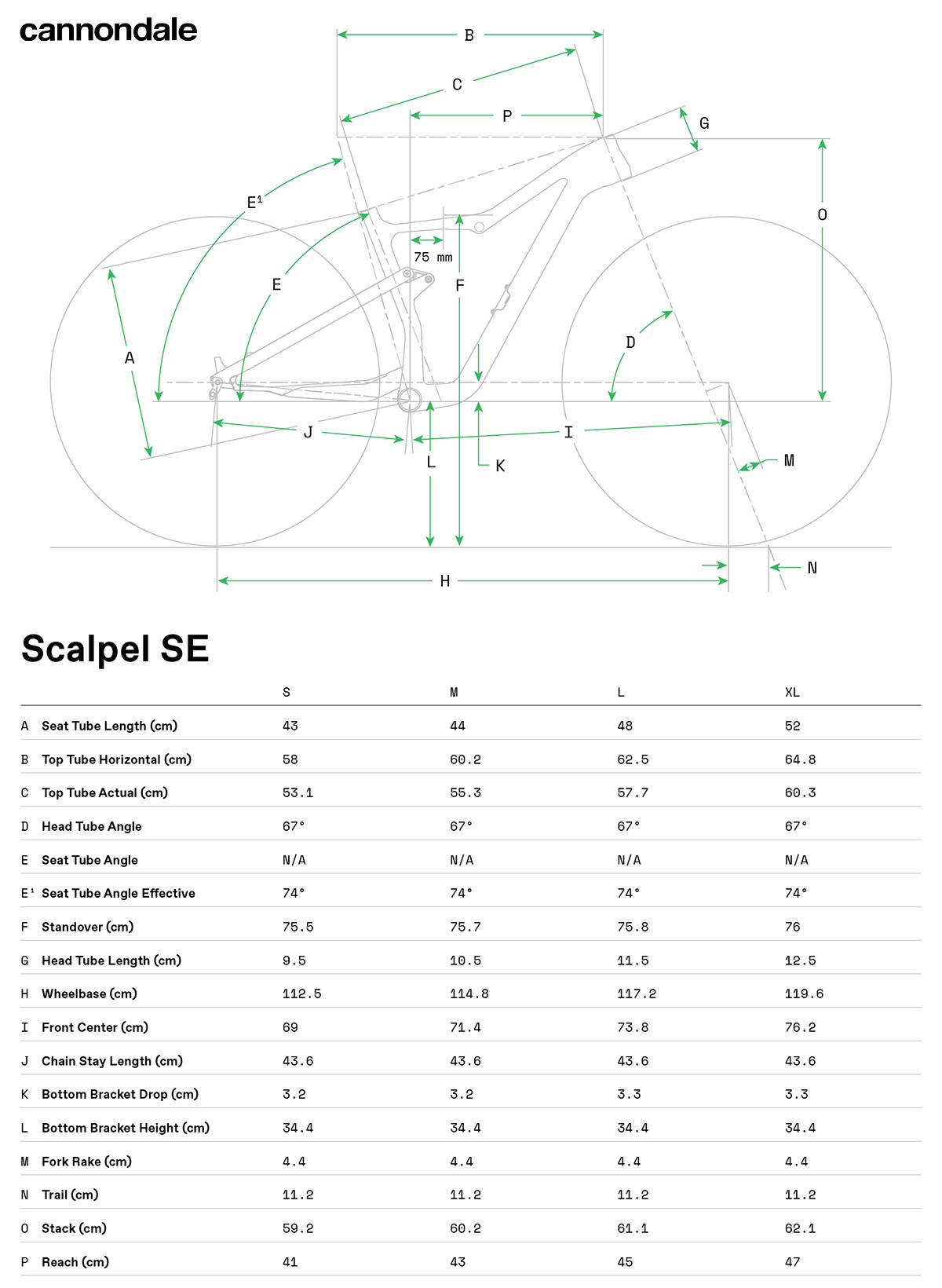 Una tabella illustra le geometrie delle Scalpel Carbon SE LTD in funzione della taglia