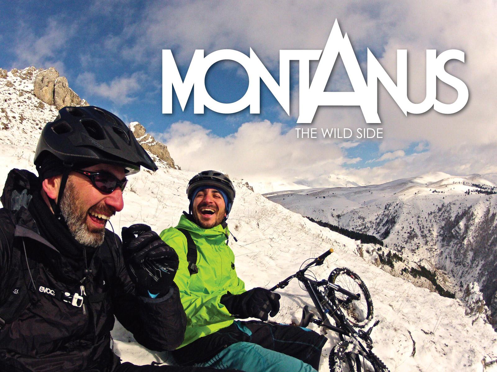 Montanus_1